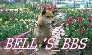 BELL'S_BBS